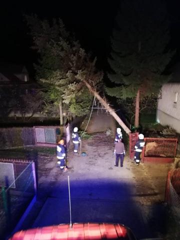Usuwanie szkód po przewróconym drzewie