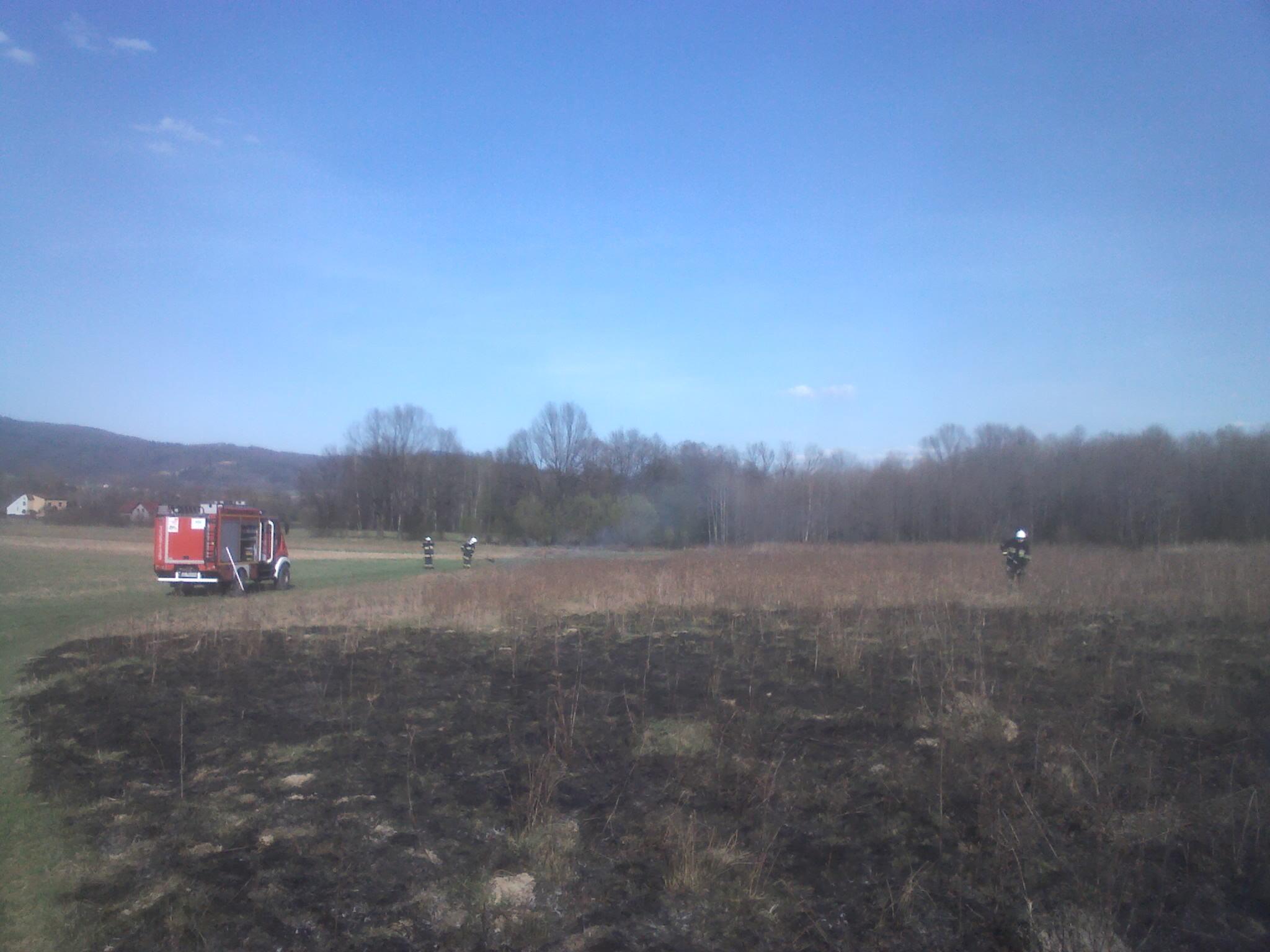Ugaszanie pożaru traw - na zdjęciu samochód strażacki i trzech strażaków