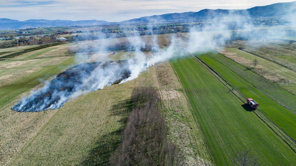 Pożar trawy z lotu drona (fotografia Jacek Kliś)
