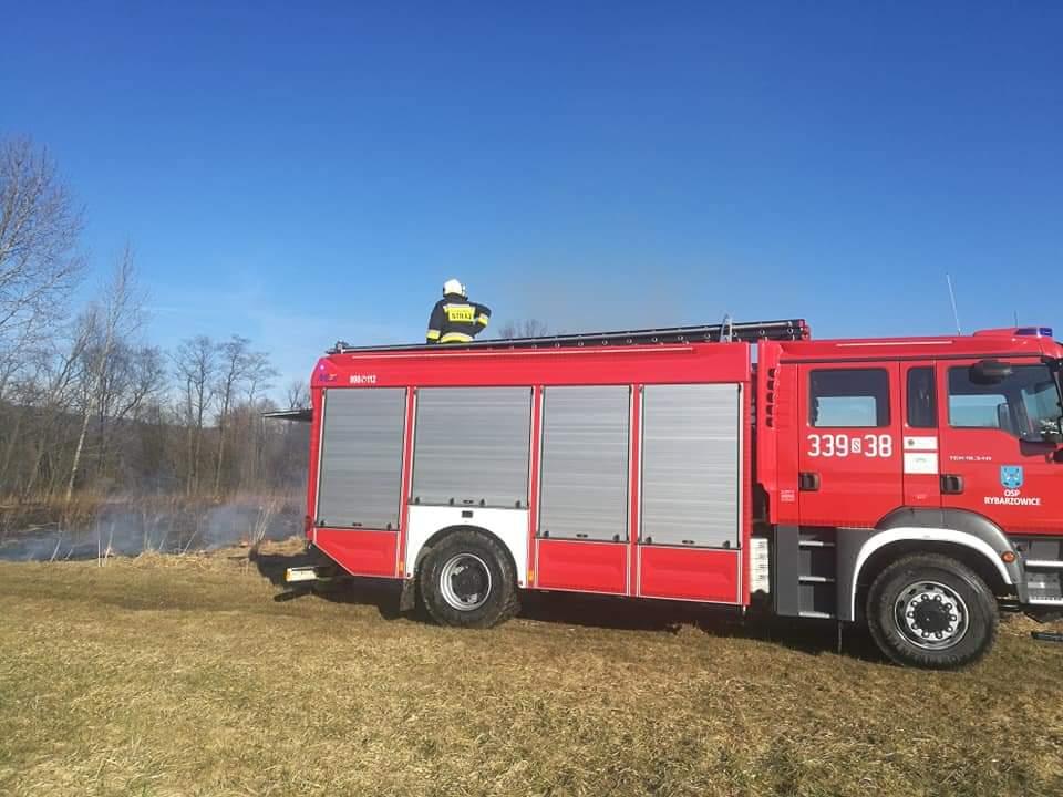Strażacy ugaszają płonące trawy